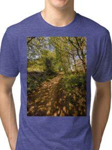 Light and Shadows Tri-blend T-Shirt
