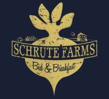 Schrute Farms B&B (no circles) Baby Tee