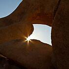 A Window to the Soul of Joshua Tree by Tenderhooligan