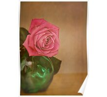 Rose and green glass Poster