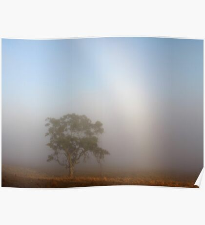 ~ The Tree and the Fog Bow ~ Poster