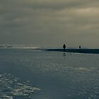 Winter Beach #7 by Remco den Hollander