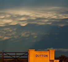 Mammatus display near Temora, N.S.W by Troy Barrett