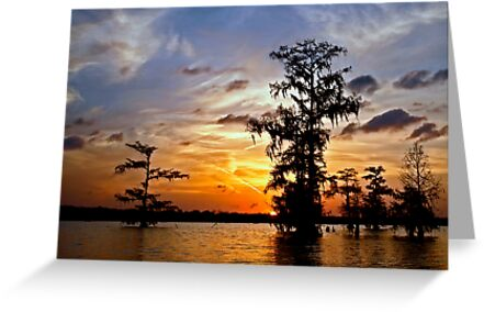 Last light on Lake Martin by cclaude