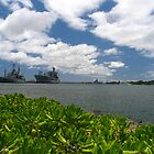 Pearl Harbour, Oahu, Hawaii 2011 by Francois Ward