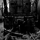 Single Flower, Abandoned Train by MJD Photography  Portraits and Abandoned Ruins