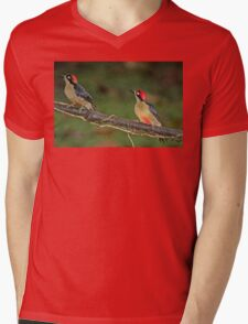 Pair of Black-Cheeked Woodpeckers Mens V-Neck T-Shirt