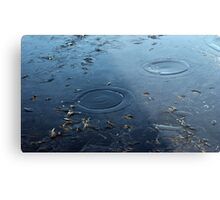 first ice with circles of water on surface on winter day in park Metal Print