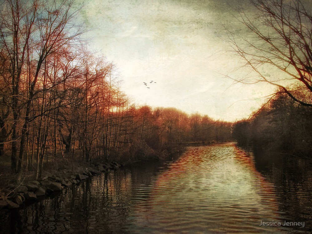 Last Light by Jessica Jenney
