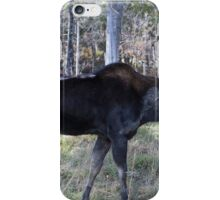 Male moose in the woods iPhone Case/Skin