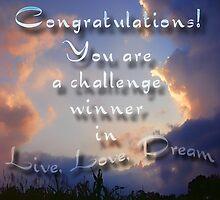 challenge winner live, love, dream by vigor