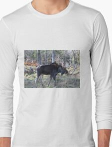 Male moose in the woods Long Sleeve T-Shirt