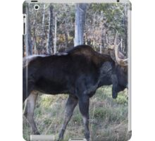 Male moose in the woods iPad Case/Skin