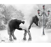 Winter magic Photographic Print