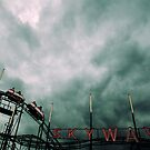 The Roller Coaster at the End of the World by Drew Walker
