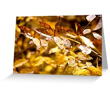 It Rained Gold Greeting Card