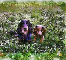 Charlie and Chester. by Lynne Haselden