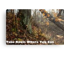 Take Roots Where You Can Metal Print