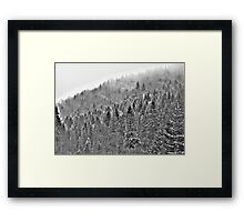 ❤❤❤ Gorce High Key . by Brown Sugar. Merry Christmas and Happy New Year 2013 ! Buy what you like ! Framed Print