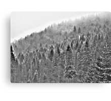❤❤❤ Gorce High Key . by Brown Sugar. Merry Christmas and Happy New Year 2013 ! Buy what you like ! Canvas Print