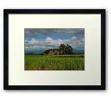 The Green Behind Our Gold Framed Print