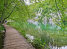 A walk in Plitvice. by Graeme  Hyde