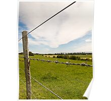 Rural New Zealand Poster