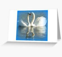 Mute swans displaying Greeting Card