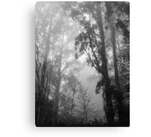 Mountain Ash in the Mist Canvas Print