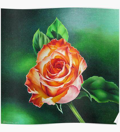 Rose that Glows Poster