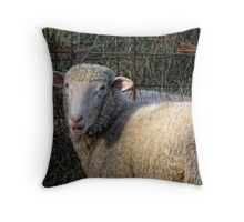 I'm not baaad!!! Throw Pillow