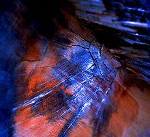 Broken Heart by Anca Jugarean