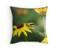 Black Eyed Susan with Beetle 8624 Throw Pillow