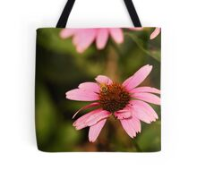 Echinacea with Bee 8674 Tote Bag