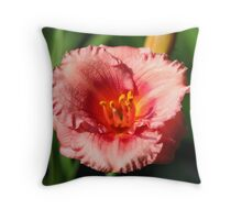 6802 Throw Pillow