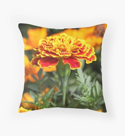 Marigold  Flower 7109 Throw Pillow