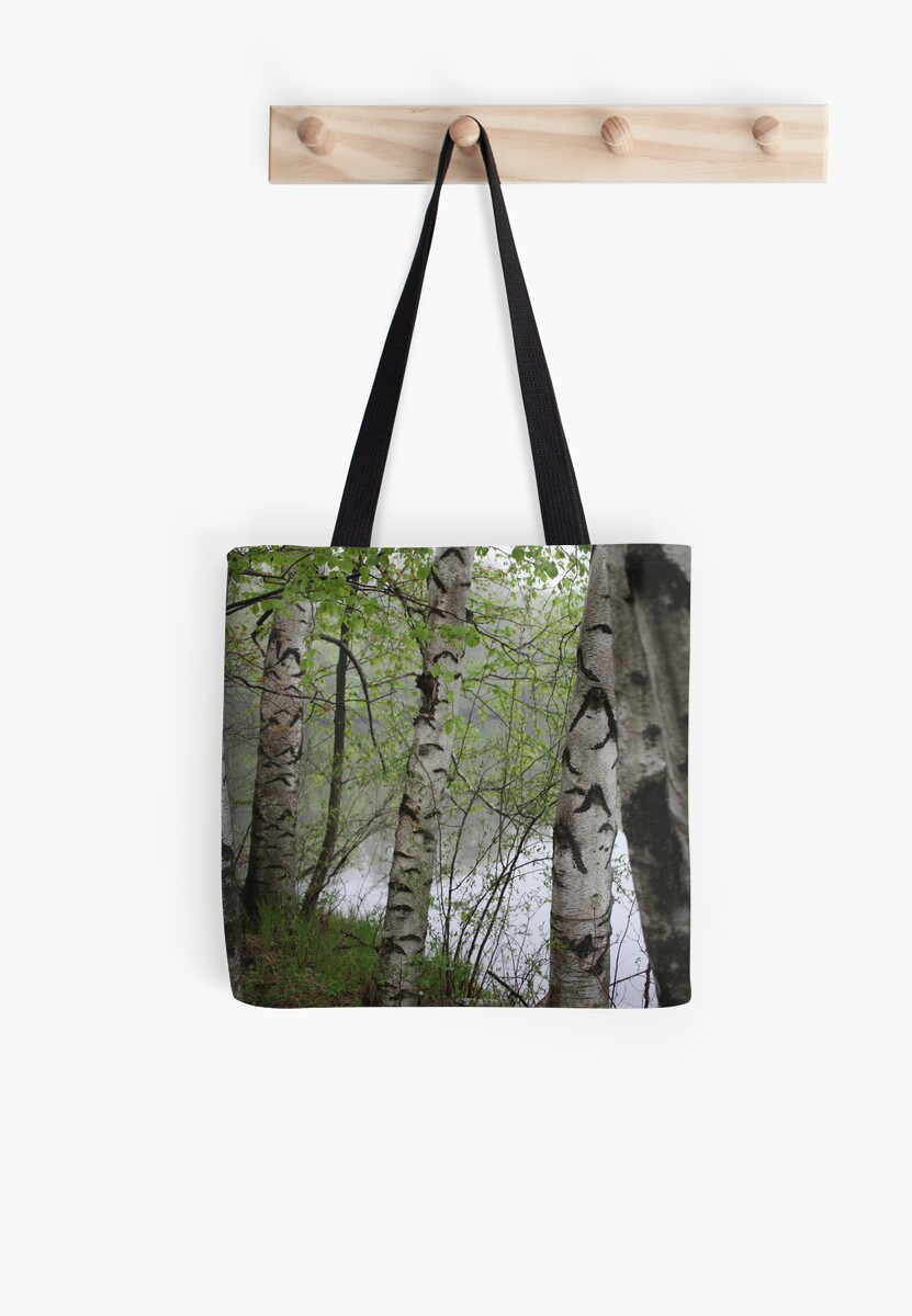 Birch Tree Waterscape 3228 by Thomas Murphy