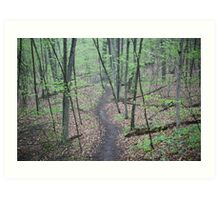 Ravine Trail 3307 Art Print