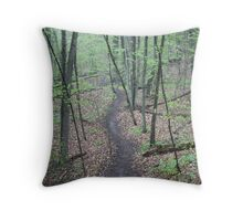 Ravine Trail 3307 Throw Pillow