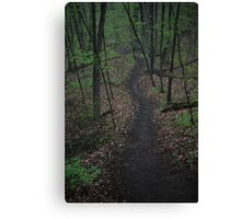 Ravine Trail 3310 Canvas Print