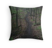 Ravine Trail 3310 Throw Pillow