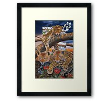 A mothers Dream Framed Print