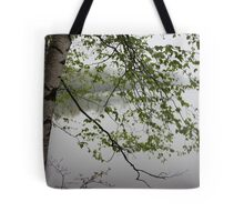 Birch Tree Waterscape 3235 Tote Bag