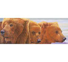 Alaska coming 2 Photographic Print