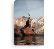 Blue Heron on Red Rock Metal Print