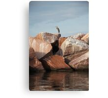 Blue Heron on Red Rock Canvas Print