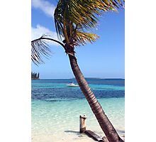 Isle of Pines, New Caledonia Photographic Print