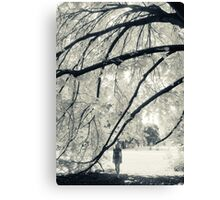 Summer in Melbourne Canvas Print