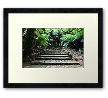 Tarra Valley Steps Framed Print