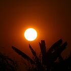 Hot Thai Sunset by RobsVisions